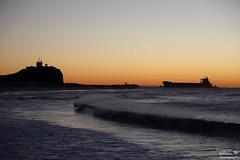 0D6A9758 - Sunrise - Nobbys Beach (Stephen Baldwin Photography) Tags: ocean city sea water sunrise newcastle ship australia vessel nsw