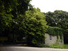 青山散步 (Steve only) Tags: trees house lumix hiking g snap panasonic vario m43 f3556 行山 dmcg1 1232mm 12323556