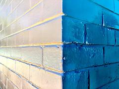 G'bye Blue (Rantz) Tags: darwin 365 roger bluecheese northernterritory mobilography bluetiful rantz doesanyonereadtagsanymore pbwa mobilographypad2016 psad2016