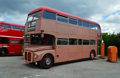 RML2499 JJD499D (PD3.) Tags: bus london buses museum vintage coach transport surrey trust routemaster preserved preservation psv pcv brooklands 2016 jjd aec rml 2499 499d lbpt rml2499 jjd499d cobhaml