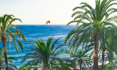 Flight above the sea (Steve-h) Tags: blue sea summer vacation orange holiday colour green beach sport june yellow fly flying mediterranean colours flight andalucia palmtrees crop costadelsol icarus seafront andalusia paraglider seashore malaga marbella lightroom motorised 2016 steveh