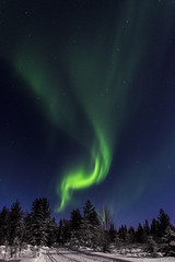 Z19_0256 LT (Zoran Babich) Tags: winter snow lapland lappi finland suomi northernlights auroraborealis