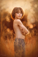 Summer Boy ({jessica drossin}) Tags: jessicadrossin portrait child kid gold summer golden light orange back hair face weeds grass tall wwwjessicadrossincom freckles eyes