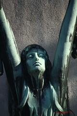 IMG_8382 (Pfluegl) Tags: wien vienna zentralfriedhof graveyard europe eu europa österreich austria chpfluegl chpflügl christian pflügl pfluegl spring frühling simmering