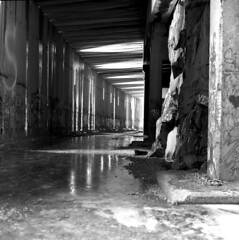 120BWB1P7Y2019001 (JWMcIntosh) Tags: 28 traintunnel hasselblad500c donnersummit fujiacros100