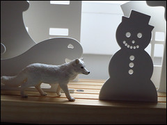 Day 362 (kostolany244) Tags: 3652018 onemonth2018 december day362 28122018 kostolany244 canonixus500hs europe germany geo:country=germany month fox snowman 365the2018edition