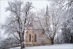 Siebenschläferkirche (ludwigrudolf232) Tags: raureif schnee bäume winter kirche ruhstorf