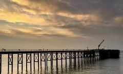 Happy fence friday xx (shona.2) Tags: iphone6 eastlothian cockenziepowerstation ocean sea pier hff fencefriday