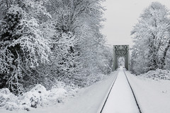 Train trestle in the snow, Willamette Valley, Oregon (Bonnie Moreland (free images)) Tags: winter snow train bridge trestle railroad trees oregon valley willamette tracks