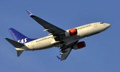 SAS LN-TUK, OSL ENGM Gardermoen (Inger Bjørndal Foss) Tags: lntuk sas scandinavian boeing 737 osl engm gardermoen
