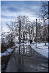 FEBRUARY 2019 NGM_0249_6859-1-3-222 (Nick and Karen Munroe) Tags: reflection reflections reflective reflectingtrees reflecting path park paths water walk walkway jackdarlingpark jackdarling mississauga lakeshore lakeshoreblvd lakefront waterscape wintry winter winterwonderland karenick23 karenick karenandnickmunroe karenandnick munroe karenmunroe karen nickandkaren nickandkarenmunroe nick nickmunroe munroenick munroedesigns photography munroephotoghrpahy munroedesignsphotography nature landscape brampton bramptonontario ontario ontariocanada outdoors canada d750 nikond750 nikon nikon2470f28 2470 2470f28 nikon2470 nikonf28 f28 colour colours color colors