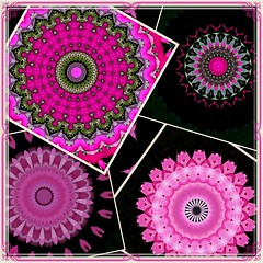 Mosaic of Kaleidoscope Lime Mandalas (Crystal Writer) Tags: mandala geometric pink hotpink black magenta mosaic crystal crystalamurray crystalmurray crystalwriter christianwriter christian writer kaleidoscope kaleidescope kaleidoscopic kalidascope calidascope kaleid optical abstract kaleidoscopesonly design pattern mirrored reflection light color colour colorful colourful image picture creation creative creativity beauty original unique kaleidoscopelime androidapp android app cellphoneapp photoedits samsunggalaxynote galaxynote smartphoneapp madewithaphoneapp kvad kvadphotostudiopro photostudiopro framed borderedandframed borderedframed border bordered filter photofilter texture layer effect photoeffect cellphone cellphonecamera cameraphone samsung samsunggalaxy galaxynote5 androidcamera