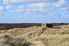 Bunker on sand dunes (Mad Kaz Photos) Tags: horsey windpump norfolk east anglia broads winter days