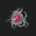 Silver Bitcoin and water splash on dark background
