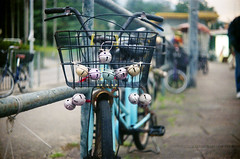 bike (Steve only) Tags: welta weltini ii schneiderkreuznach xenon 120 f5cm 502 50mm f20 rf rangefinder foldingcamera 老折 fujifilm fujicolor c200 200 film epson gtx970 v750 snaps 單車