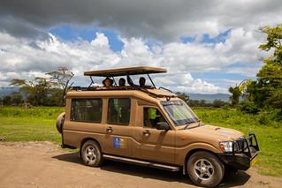 Africa Safari 4×4 Jeep
