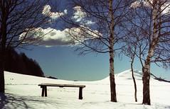 (kapa☆) Tags: om2 zuiko50mm14 zuiko olympus montebaldo spring pràalpesina snow clouds trees sky olympusom2 analog analogue analogico analoguephotography autaut expiredfilm 35mm film