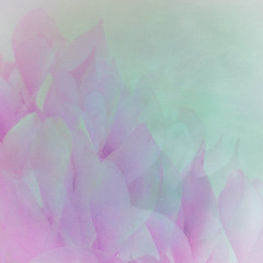 40/365 (Jane Simmonds) Tags: iphone multipleexposure abstract pastel flower cyclamen 3652019 blur petals
