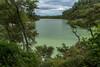 _D806162.jpg (David Hamments) Tags: lakengakoro panorama greenlake thermalwonderland waiotapu fantasticnature flickrunitedaward