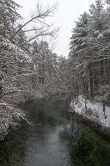 quabbinreservoir2019-85 (gtxjimmy) Tags: nikond7500 nikon d7500 winter snow quabbinreservoir swiftriver ware belchertown massachusetts watersupply newengland quabbin