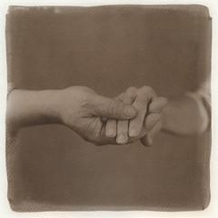 "Pusi & Shajt hands 01. (Kallitype) (sirolajos) Tags: kallitype kallitípia altprocess ""historical photographic printing processes"" ""alternativephotograpycom"" hasselblad ""kodak tmax 400"""