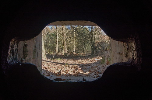 The Gunners View