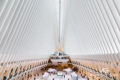 Oculus Building, New York City, USA (AnthonyGurr) Tags: newyork newyorkcity nyc thebigapple america usa unitedstates building architecture modern oculus worldtradecenter anthonygurr manhattan city