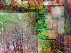 The Alpine Factory - psychedelic fall field trip (MizzieMorawez) Tags: photoshop collage montage fallimpressions art campainting digitalart colorful forest trees walk austrianalps poetic meditation nature