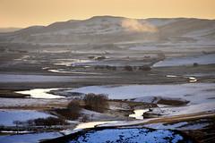 Landscape (MelindaChan ^..^) Tags: innermongolia china 内蒙古 snow white 雪 tree plant nature chanmelmel mel melinda melindachan 冰 bashang 壩上