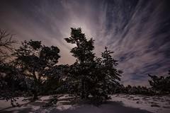 Moonglow (clemensgilles) Tags: longexposure nachtfotografie moonglow deutschland eifel germany