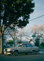 Santa Clara (bior) Tags: santaclara car classiccar pentax645nii 6x45cm 645 expiredfilm mediumformat 120 pentax645 fujifilmpro400h pro400h volvo