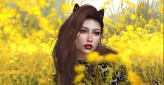 Lovecat (Bunny (Cuneen68)) Tags: secondlife avatar virtualworld virtualgirl reign catwa skinnery alaskametro ikon besom whimberly