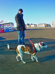 Victure Action Camera (Jainbow) Tags: victure victureactioncamera camera jainbow southsea portsmouth southparadepier tim lina rescuedog