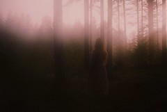 In the forest (.everlasting) Tags: fog forest 35mm light mist analogue film melancholia finland trees poetic everlasting feverdreams hadararielmagar