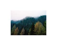 (Barnaby Hutchins) Tags: 35mm imaconflextightprecisionii kodakportra400 leica50mmsummicronv4 leicam6 slovenia