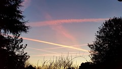 Lignes célestes (Chaufglass) Tags: ciel aurore matin hiver lignes rose météo nuages