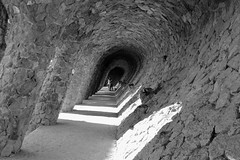 Park Güell - The Laundry Room Portico (fxdx) Tags: park güell barcelona gaudi fz1000 mono monochrome bw nb