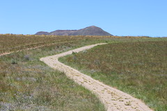 Follow the Path (Rckr88) Tags: follow path followthepath pathway followthepathway walk walkway walks walking hiking hike hikes greenery green grass clarens goldengatehighlandsnationalpark freestate southafrica golden gate highlands national park free state south africa nature outdoors travel travelling