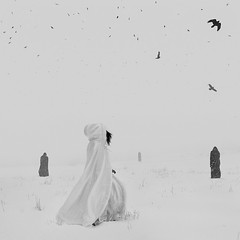 Haunted Fairytale (adbrucephotos) Tags: blackandwhite blackandwhitephotography haunted fairytale white whitedress black blackdress snow winter meatloaf music colorado coloradoartist coloradorockies birds bird film filmphotography lookslikefilm running flying conceptual conceptualphotography composite compositephotography wintery ghouls ghoul ghost ghosts haunting eerie scary selfportrait selfportraiture selfportraitphotography selfexpression self brunette annabruce art darkart