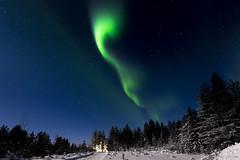 Z19_0248 LT (Zoran Babich) Tags: winter snow lapland lappi finland suomi northernlights auroraborealis