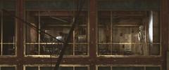 Dollhouse (PulseZET) Tags: metro metroexodus 4agames deepsilver 4aengine