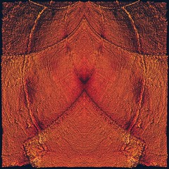 714 (MichaelTimmons) Tags: rust texture orange red symmetry symmetrical abstract digitalart art artwork