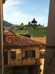 Barolo (Langhe) - Matissian Glimpse (Alessia.Malachiti) Tags: langhe piemonte piedmont wine vino barolo roddino cuneo