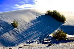 Bright Light, Dark Shadows (Mark A. Morgan) Tags: white sands national monumentnew mexicomark a morgan shadows sand dunes