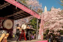 CherryBlossomDC2019-675.jpg (carlton.colter) Tags: kizuna cherryblossomdc taiko taikotakeover sakurataikofest washingtonmonument washington dc usa
