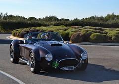AC Cobra - 1965 (SASSAchris) Tags: ac cobra 427 10000 tours castellet circuit ricard voiture anglaise américaine shelby carroll auto