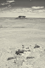Bir Zekreet, Qatar (fisherbray) Tags: fisherbray qatar stateofqatar دولةقطر dawlatqatar alrayyan الريان zekreetpeninsula birzekreet nikon d5000 rasabrouq رأسأبروق abrouqpeninsula bw monochrome silverefexpro