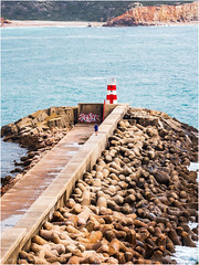The port Entrance of Sagres (Luc V. de Zeeuw) Tags: harbor harbour light lighthouse man port sagres seawall algarve portugal