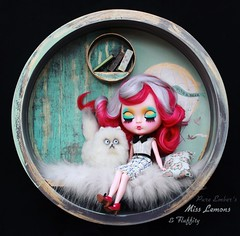 The weekend bubble 💕 (pure_embers) Tags: pure embers blythe doll dolls custom photography takara neo uk laura england girl pureembers miss lemons nanuka alpaca hair colourful portrait bubble box mrwhiskers fluffity von kittytoes cat cute