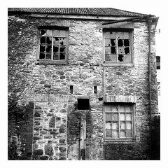 Decay (rjvanderzalm) Tags: decay rolleiflex fomapan standdeveloping
